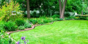 Make your garden look more finished with our edging ideas